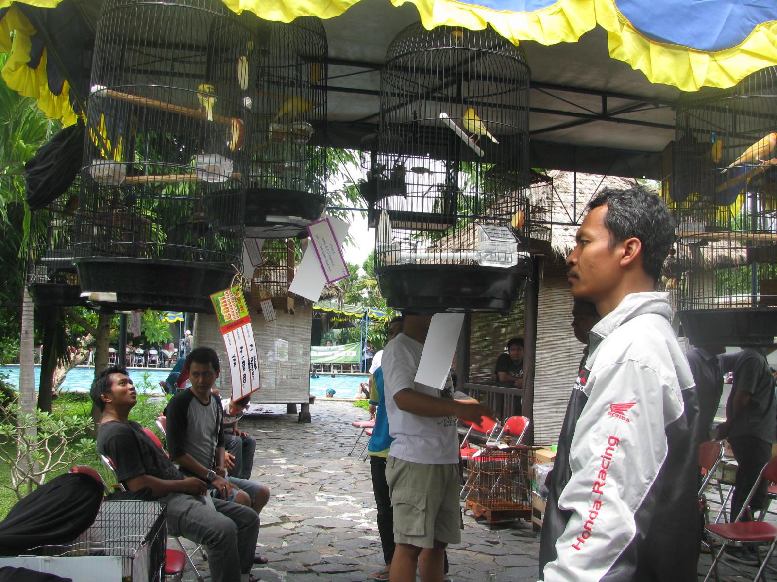 1-paket-wisata-jogja-pasar-burung-ngasem