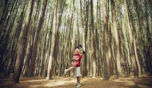 hutan-pinus-dlingo-prewed