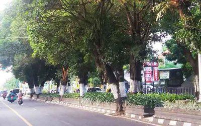 Kotabaru jogja, Rindang nan asri, Revitalisasi Kotabaru, Malioboro Jogja, Paket Wisata Jogja75