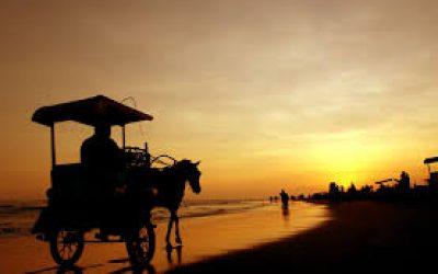 Jogja ramai, Berlibur ke Jogja, Kunjungan ke Pantai Jogja, Liburan sekolah di Jogja, paket wisata Jogja75