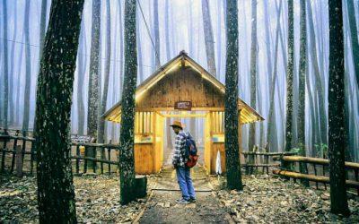 hutan pinus dlingo, tiwul ayu mbok sum, jurang tembelan, seribu batu, hutan pinus imogiri, paket wisata jogja75